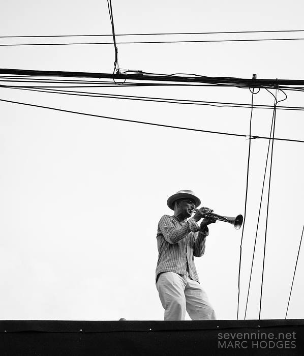Trumpeter and Wires