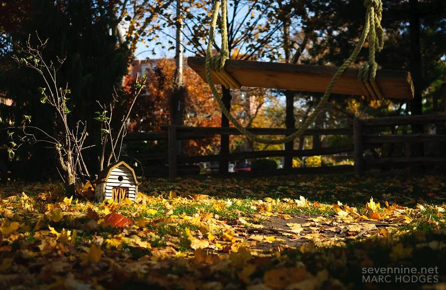 Little House and a Swing
